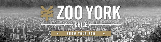 Zoo York – Know Your Zoo Chile Documental