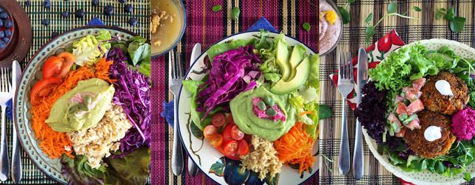 Almuerzos veganos a la Of! – Mundoelefante.com